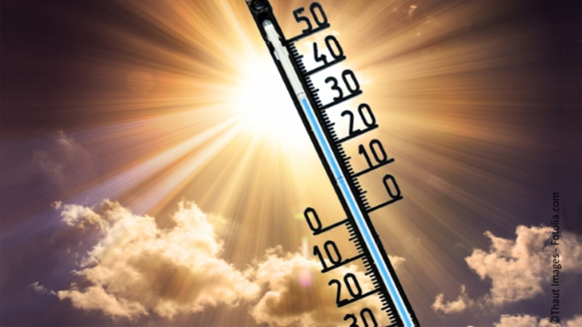 thermometer in sunlight
